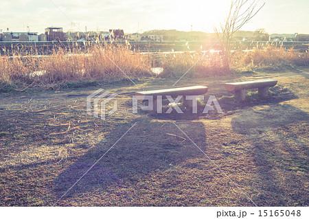 ベンチのある風景 多摩川河川敷 15165048