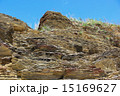 地殻変動 嘉陽層 地層の写真 15169627