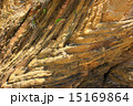 地殻変動 嘉陽層 地層の写真 15169864