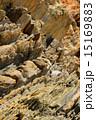 地殻変動 嘉陽層 地層の写真 15169883