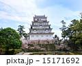 染井吉野 福山城 桜の写真 15171692