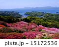 長串山のつつじと九十九島の眺め 15172536