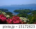長串山のつつじと九十九島の眺め 15172623