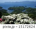 白花ツツジと九十九島の眺め 15172624