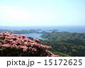 ピンクのツツジと九十九島の眺め 15172625