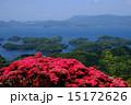 長串山のツツジと九十九島の眺め 15172626