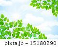 空と緑 15180290