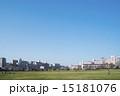 公園 広い 広場の写真 15181076