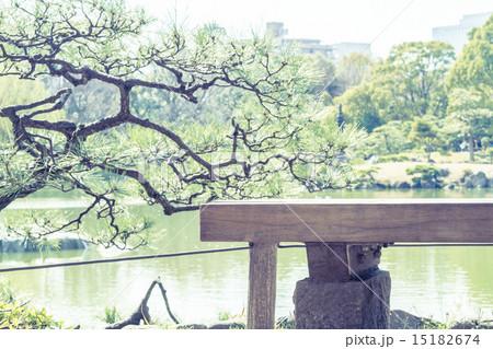 ベンチのある風景 清澄庭園 15182674