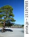 嵐山 渡月橋 京都の写真 15197885