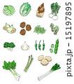 春から初夏の野菜  15197895
