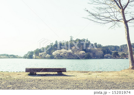背景素材 ベンチのある風景 15201974