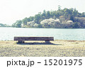 南湖公園 春 桜の写真 15201975