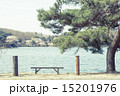 松 南湖公園 春の写真 15201976