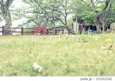 背景素材 ベンチのある風景 15202282