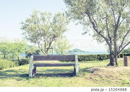 背景素材 ベンチのある風景 15204988