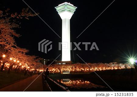 五稜郭公園 夜桜 ライトアップ 15231835
