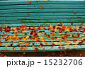 ベンチ 落ち葉 紅葉の写真 15232706