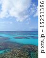 波照間島 サンゴ礁 沖縄の写真 15251386