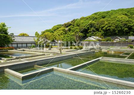 松山城、二之丸史跡庭園 15260230
