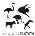 silhouette animals over white background vector illustration 15267676