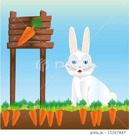 rabbit in harvest of carrots vector illustrationのイラスト素材 [15267887] - PIXTA