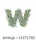 W アルファベット 小文字のイラスト 15271782