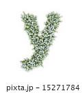 アルファベット Y 小文字のイラスト 15271784