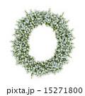 アルファベット o 紫陽花のイラスト 15271800