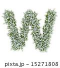 W アルファベット 紫陽花のイラスト 15271808
