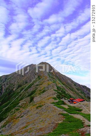 北岳といわし雲 15272935