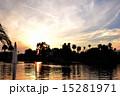 椰子の木 ウエストレイク 黄昏の写真 15281971