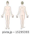 人体 正面と後ろ姿 15295393