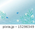 背景素材ヨコ-夏,水辺,鳥 15296349
