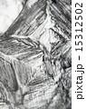 顕微鏡写真 結晶 塩の写真 15312502