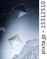 顕微鏡写真 結晶 塩の写真 15312510
