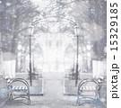 寂しげ 寂しさ 寂寥の写真 15329185