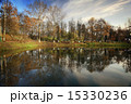 木 ウィンター ウインターの写真 15330236