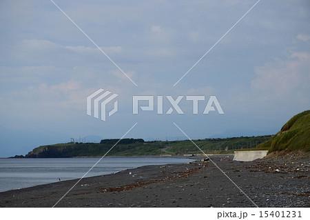 大安在浜海岸 15401231