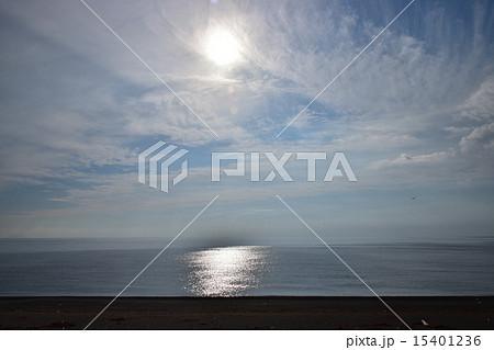大安在浜海岸 15401236