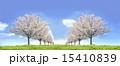 桜並木 草原 青空 左右対称 合成 15410839