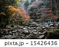 赤目四十八滝/千畳岩 15426436