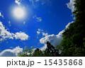初夏 15435868