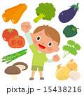 野菜9種と元気な男の子 15438216