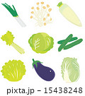 淡色野菜9種セット 15438248
