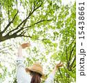森林浴 女性 木漏れ日の写真 15438661