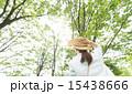 森林浴 木漏れ日 新緑の写真 15438666