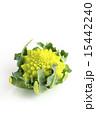 カリフラワー ロマネスコ 食材の写真 15442240