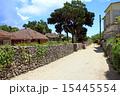集落 竹富島 沖縄の写真 15445554