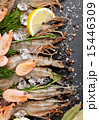 海老 えび エビの写真 15446309